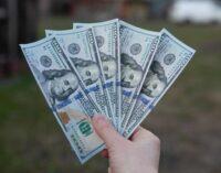 Українці у лютому продовжували скуповувати валюту